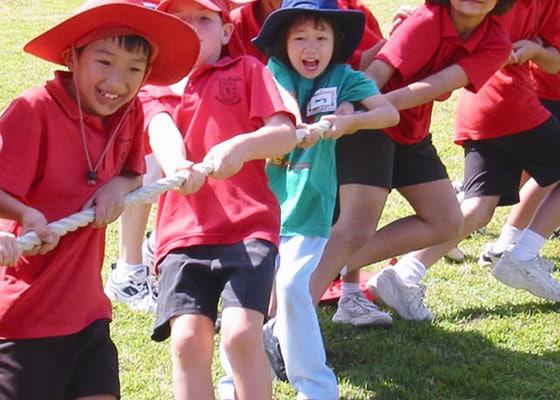 Activity Programs, Council events Brisbane